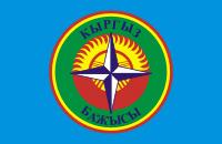 Kyrgyz Customs Flag