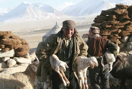 Кыргызская диаспора