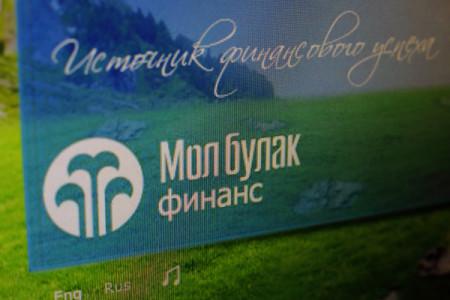 """Логотип компании """"Мол Булак"""""""