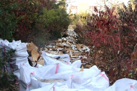 По наблюдениям корреспондентов Kloop.kg, побывавших в ботсаду, вырубленные деревья специально заготовлены в качестве дров.