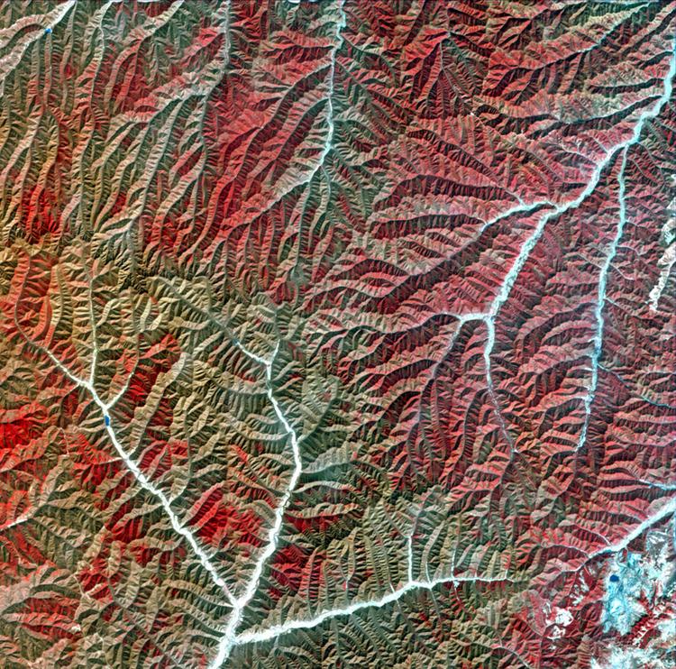 Горы разделяют сухие речные долины. Красный и коричневый цвета показывают различные виды растительности.