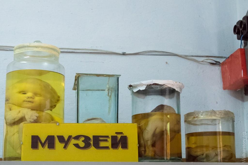 В морге есть музей для желающих увидеть различные патологии.