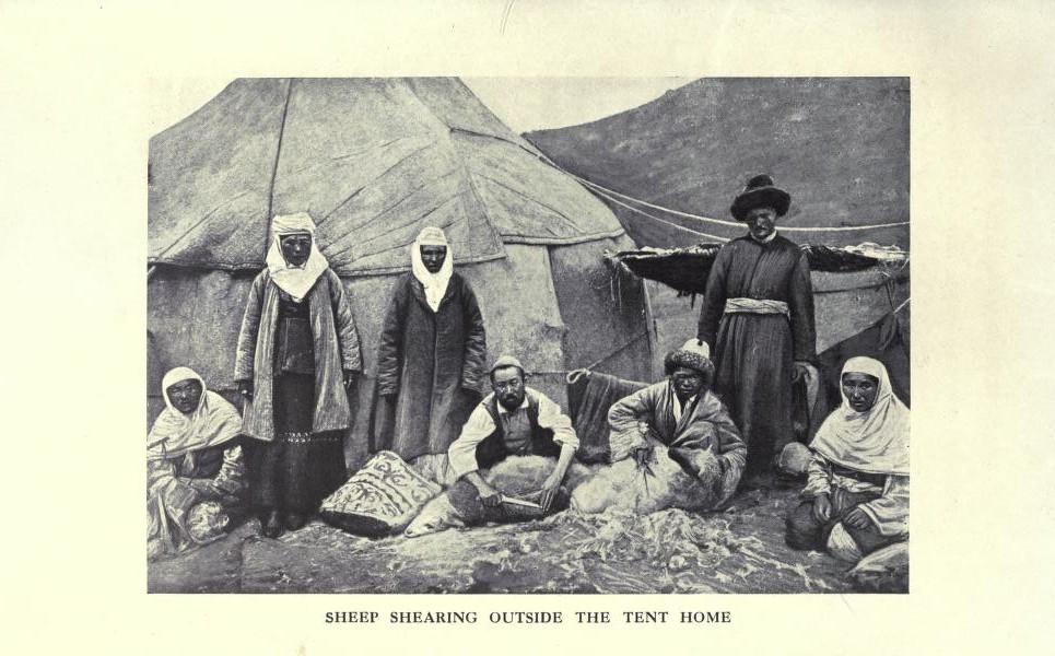 Стрижка овец возле палаточного домика (юрты).