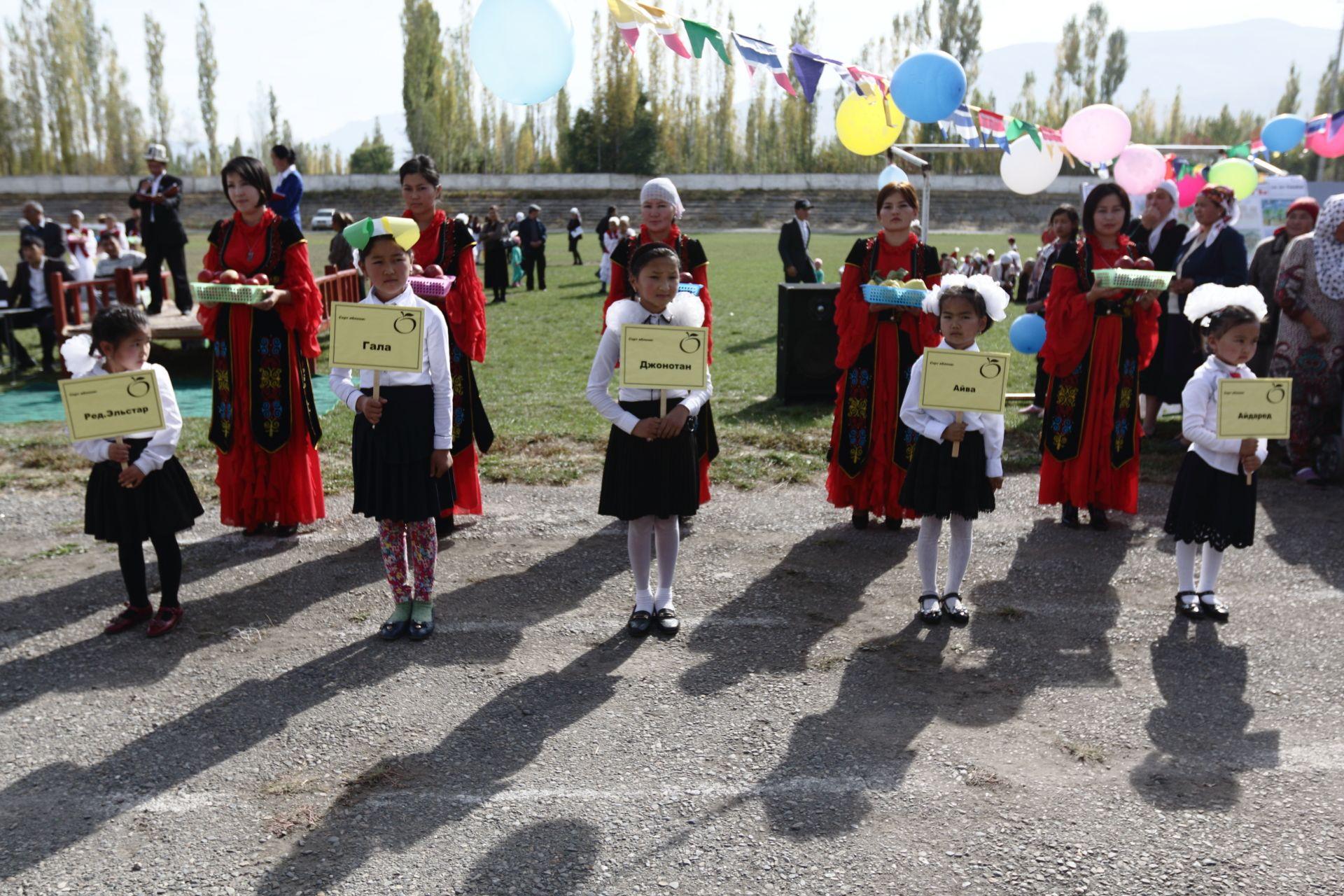 Ноокатские дети представили зрителям фестиваля разные сорта яблок. Всего здесь можно было найти более 20-ти их сортов.