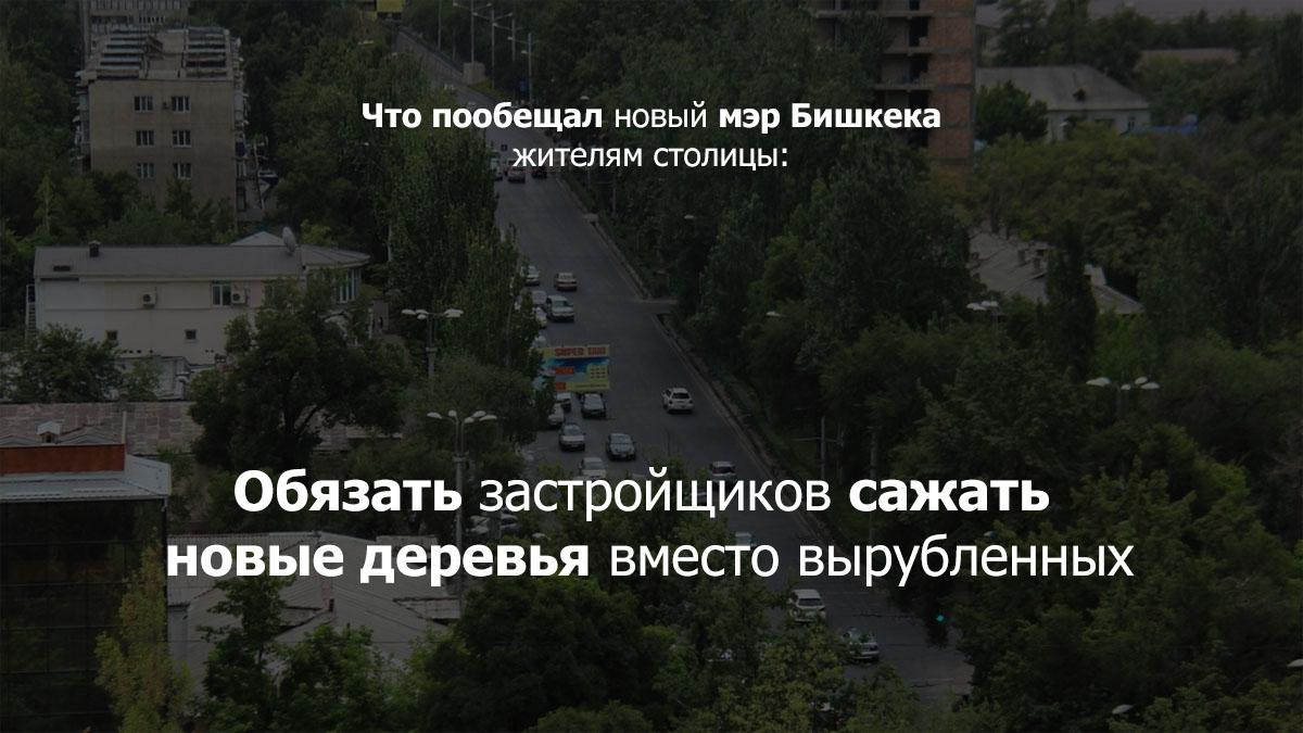 derevya