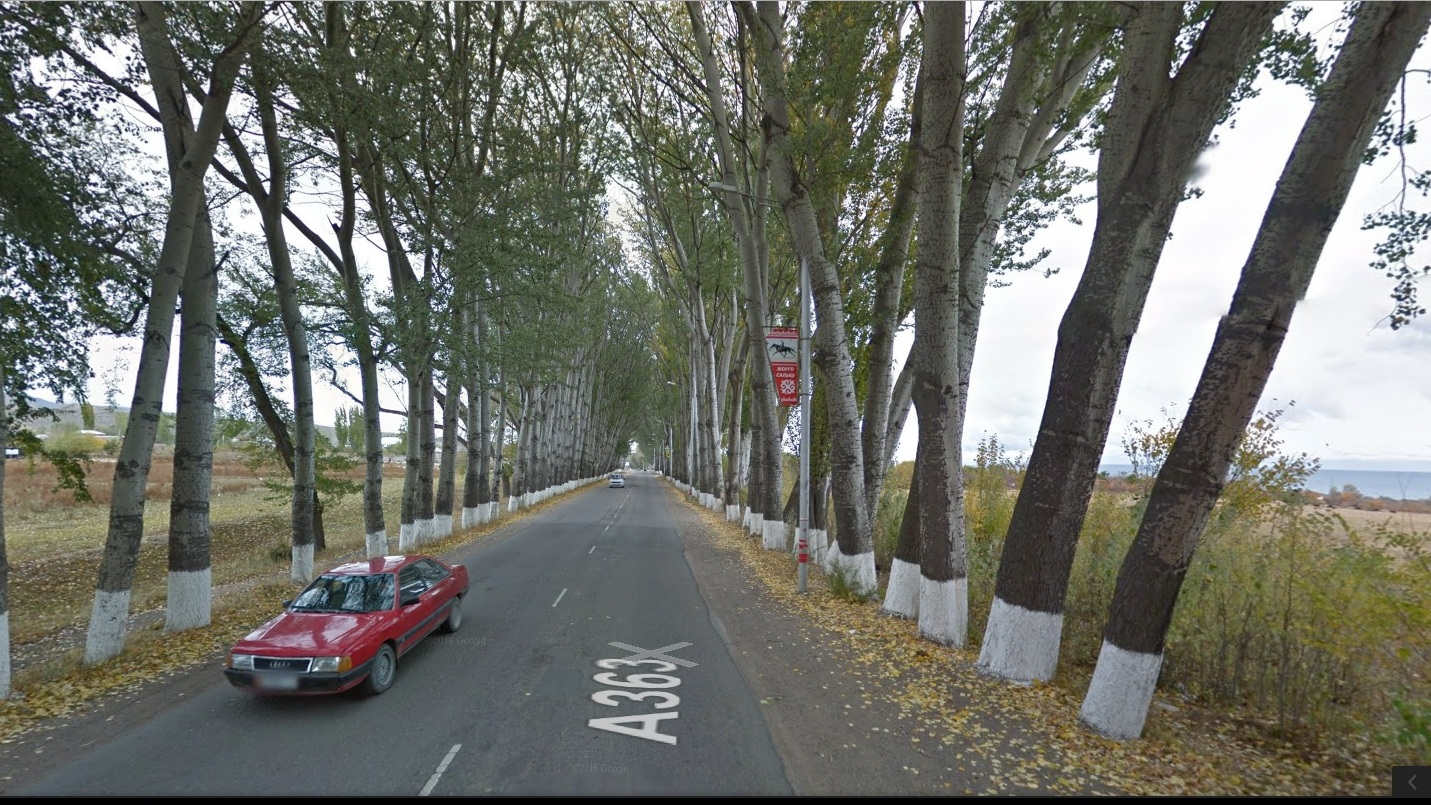 Аллея Раппопорта на Иссык-Куле в сервисе Google Street View