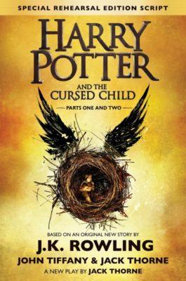 Вот так выглядит обложка новой книги