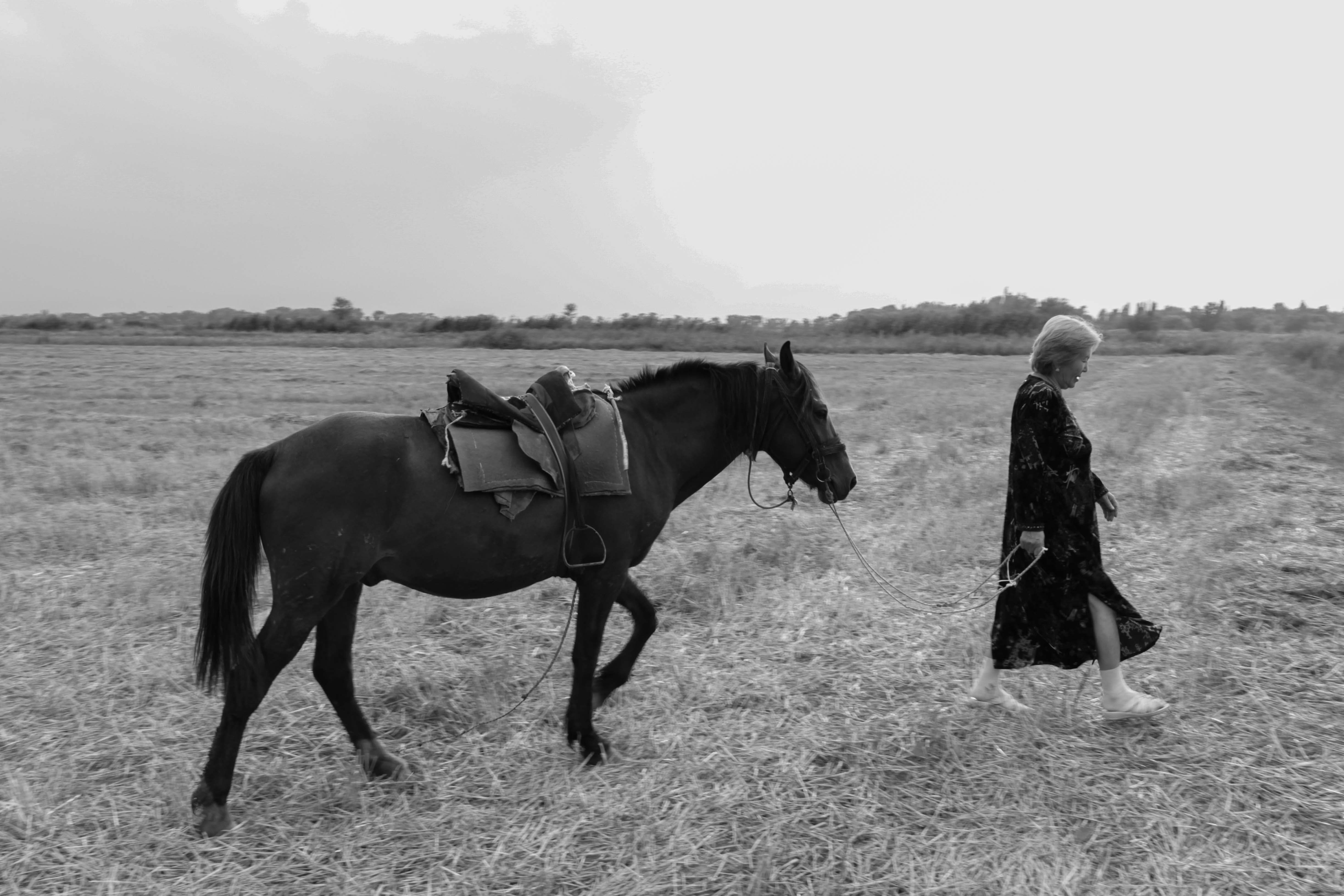 Алтынкуль на своем поле в селе Ийри-Суу