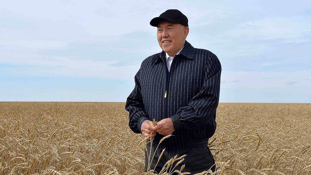 Президент Нурсултан Назарбаев. Фото: ic24.kz