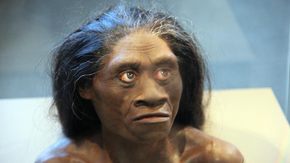 «Хоббитов» истребили древнейшие люди