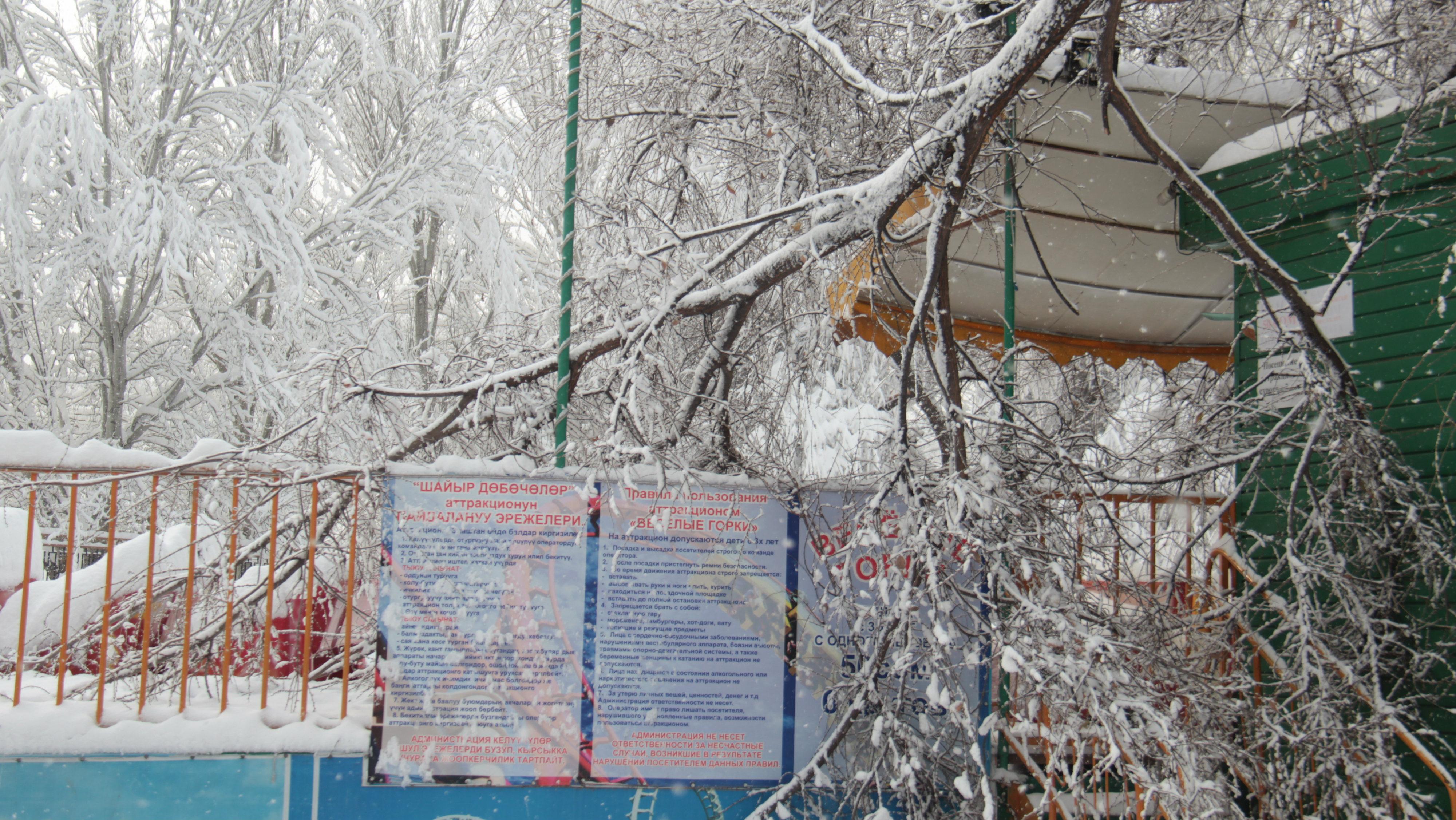 «Дополнение» к аттракциону в парке Панфилова.