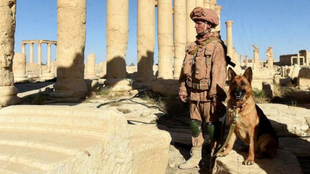 Россия вмешалась в сирийский конфликт в конце сентября 2015 года. Фото: AFP