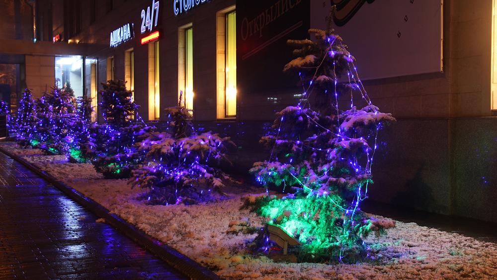 Грустные ели в паутине светодиодов на пересечении проспекта Чуй и улицы Гоголя.