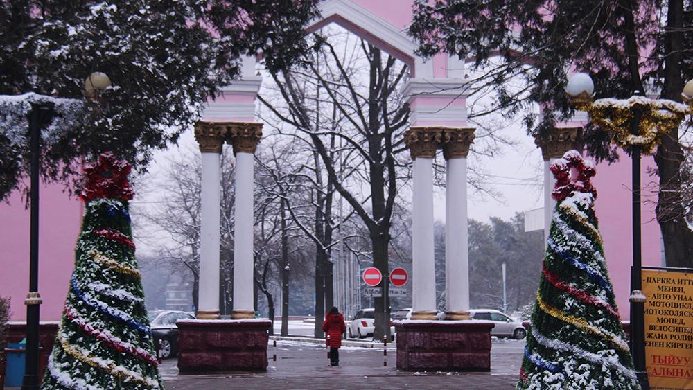 Сразу две новогодние елки встречают посетителей парка имени Панфилова.