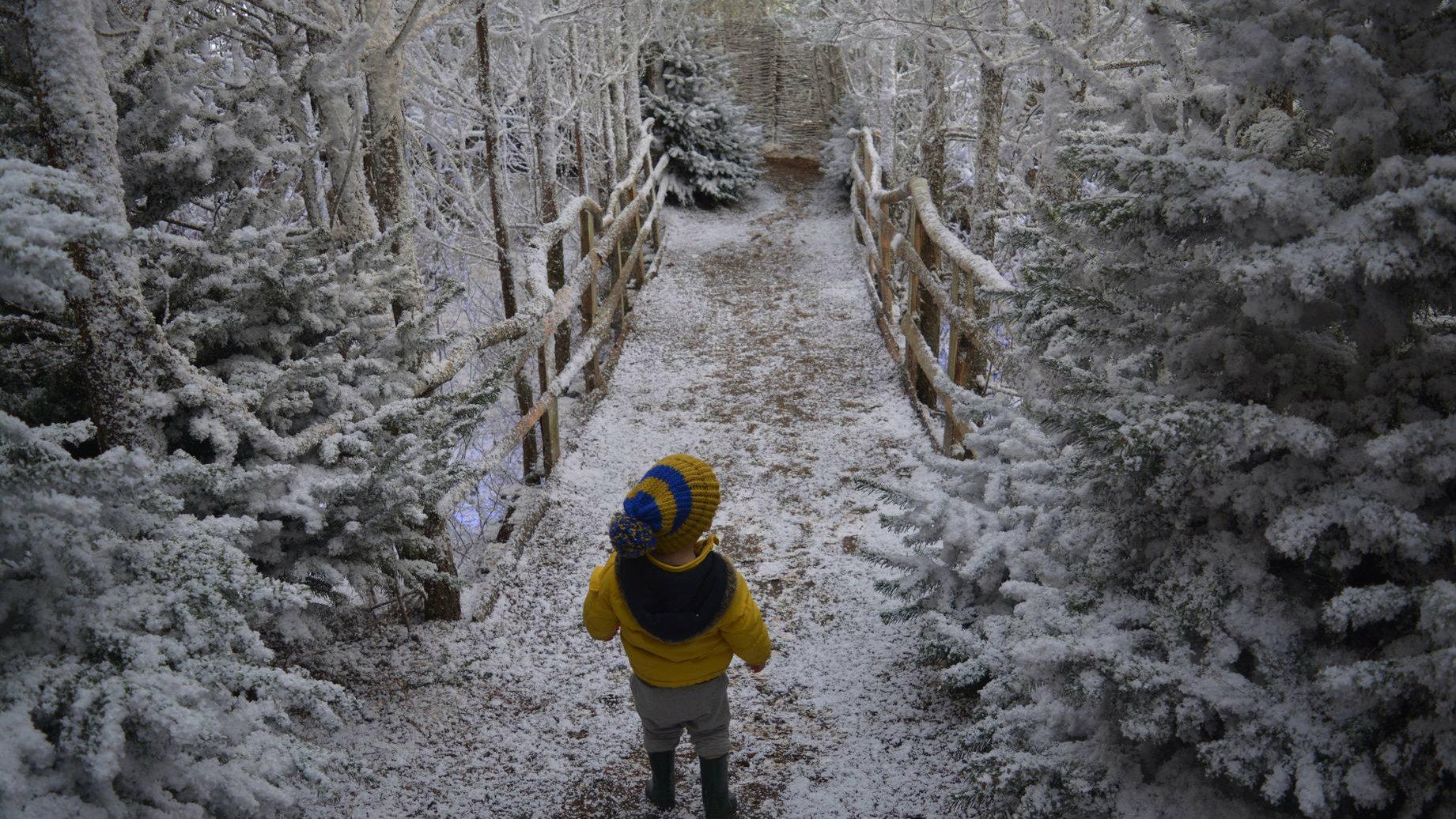 Лапландия. Фото: Beth Duffell