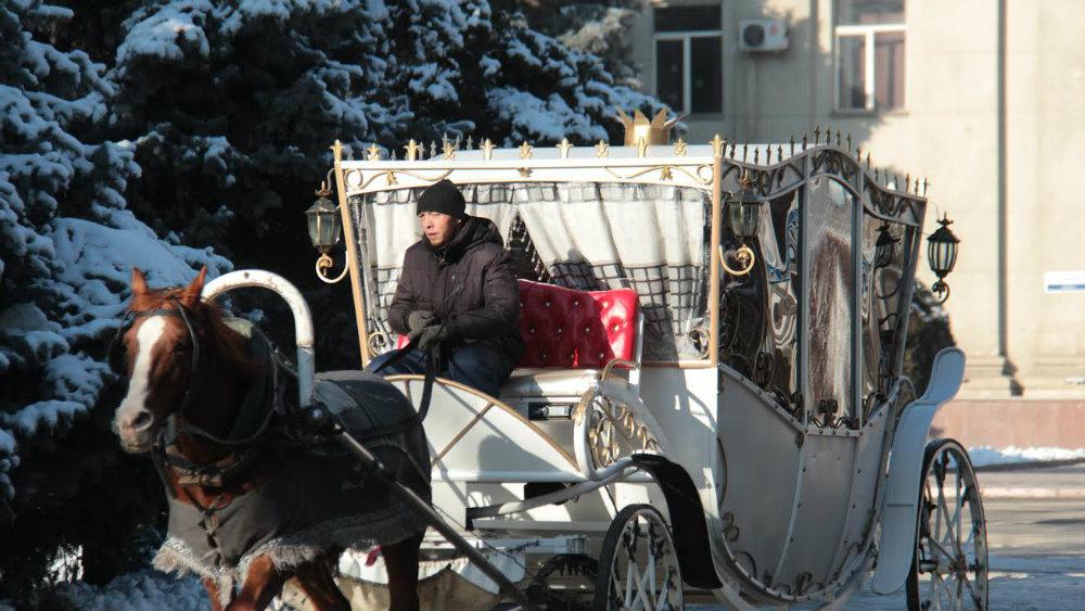Кучер и карета довезут вас на бал или до ближайшей остановки.