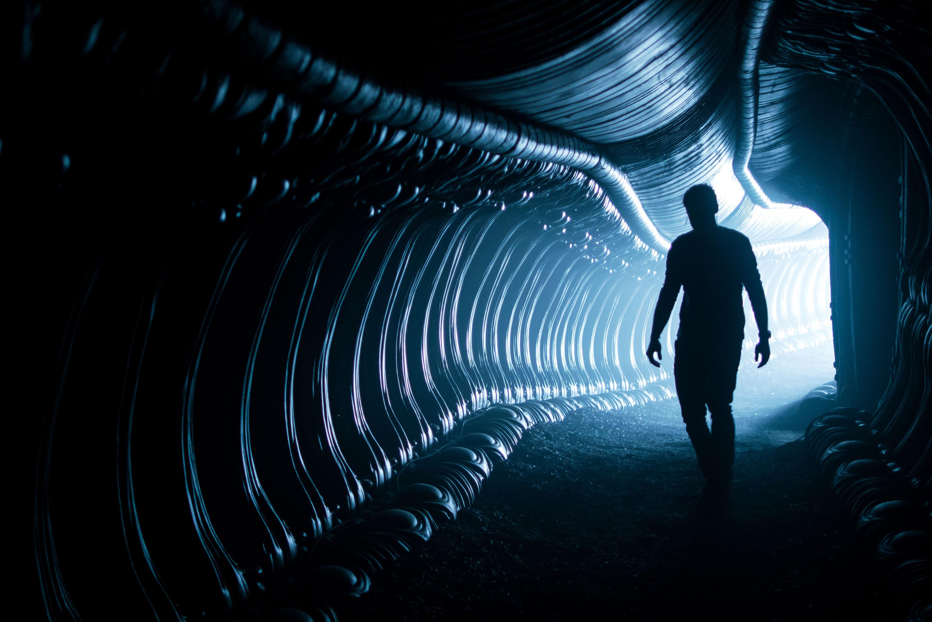 Женщина испытывает материнские чувства к инопланетному монстру-убийце